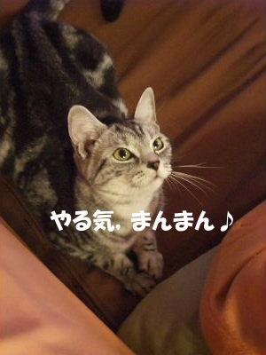 2009年7月リベンジ5.JPG