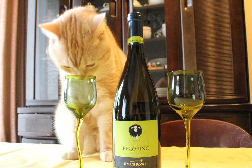 2010年11月ワイン2.JPG