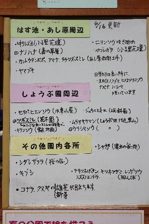 2010年4月四季4.JPG