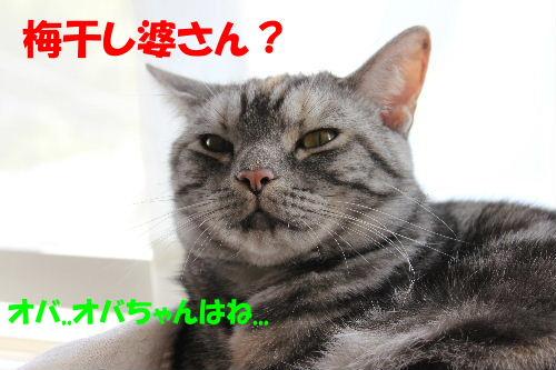 2011年10月かえ2-3.JPG