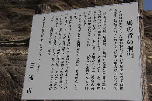 2011年4月三崎8-2.JPG