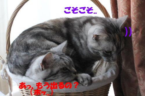 2011年5月一緒7.JPG