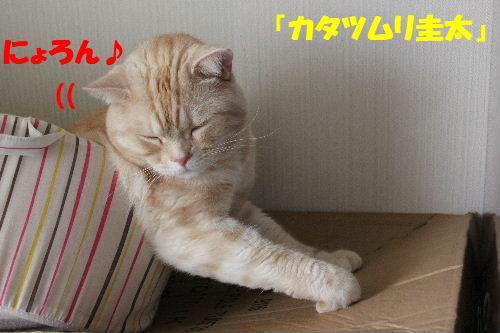 2011年5月万華鏡4.JPG