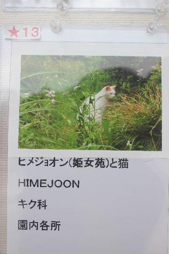 2011年6月園5-2.JPG