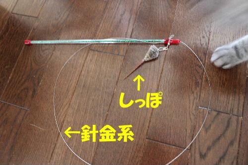 2011年9月最終1-2.JPG