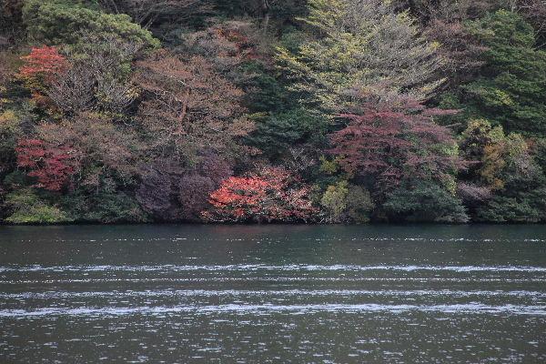 2011_11_12_6218.JPG