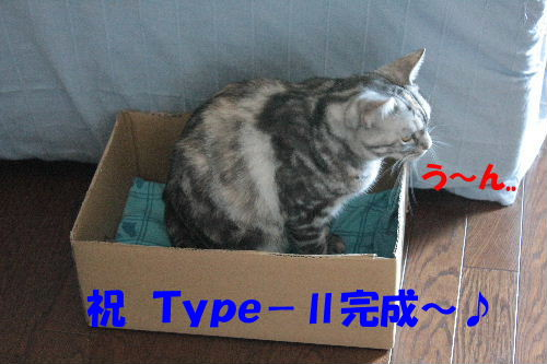IMG_7905.JPG