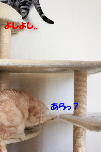 IMG_8325.JPG