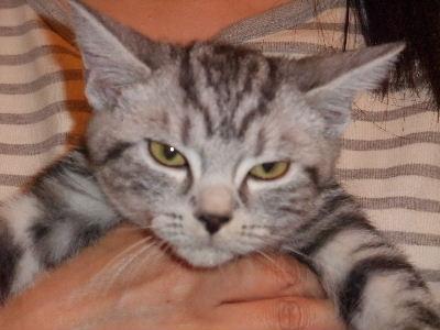 2009年12月バブハ1-2.JPG