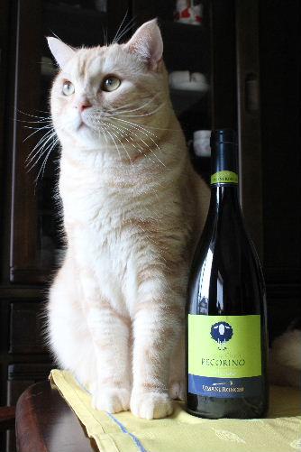 2010年11月ワイン4.JPG