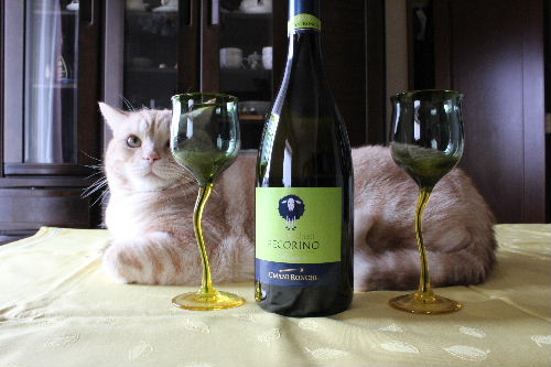 2010年11月ワイン6.JPG
