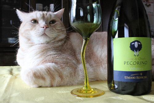 2010年11月ワイン7.JPG