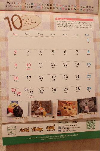 2010年12月カレ4-2.JPG