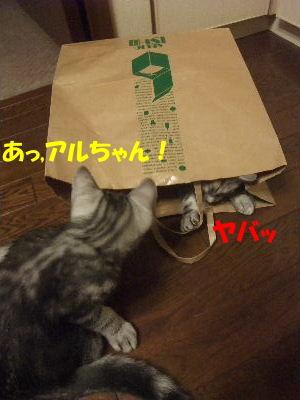 2010年1月紙袋6.JPG