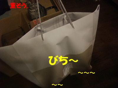 2010年3月みたび5.JPG