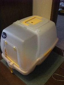 2010年3月トイレ6.JPG