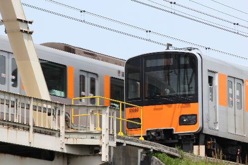 2010年5月ご近所2.JPG