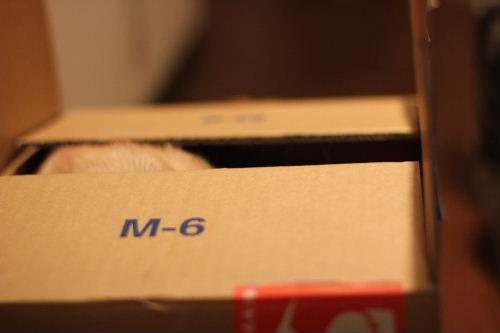 2010年6月BOX1.JPG