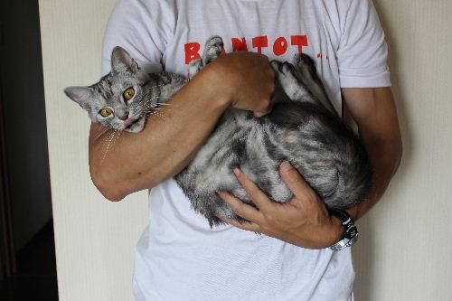 2010年8月抱っこ1.JPG