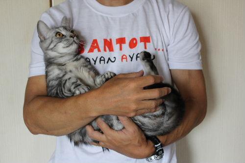 2010年8月抱っこ1-2.JPG