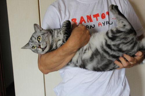 2010年8月抱っこ4.JPG