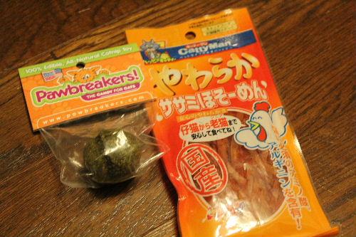 2010年9月子猫缶8.JPG