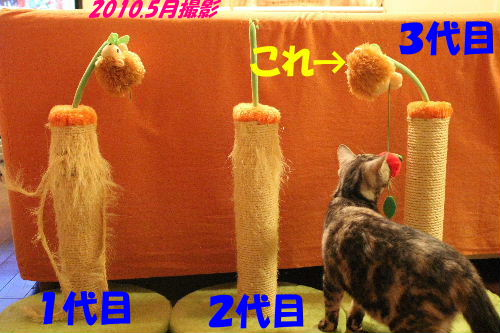 2010年9月枕1-2.JPG