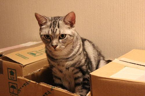 2010年9月狙い5.JPG