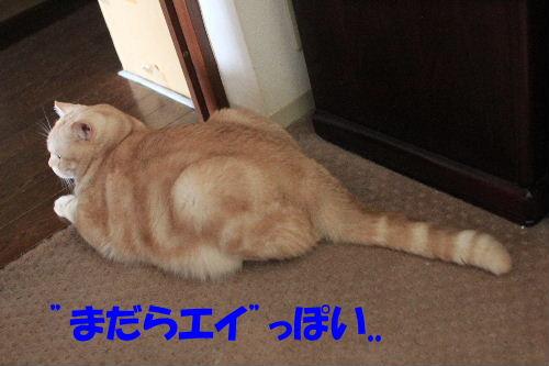 2011年10月変5.JPG