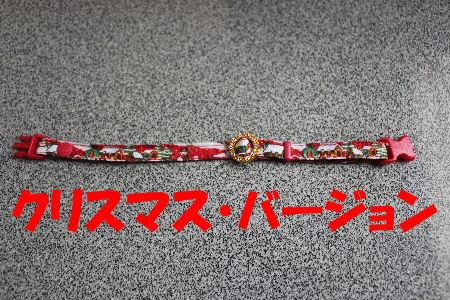 2011年11月首輪2-4.JPG