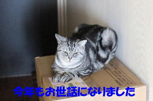 2011年12月くつ2.JPG