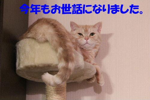2011年12月くつ3.JPG