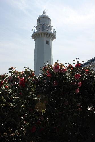 2011年4月三崎1.JPG