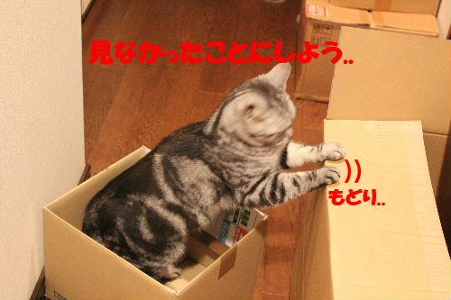 2011年4月箱ノエ7.JPG