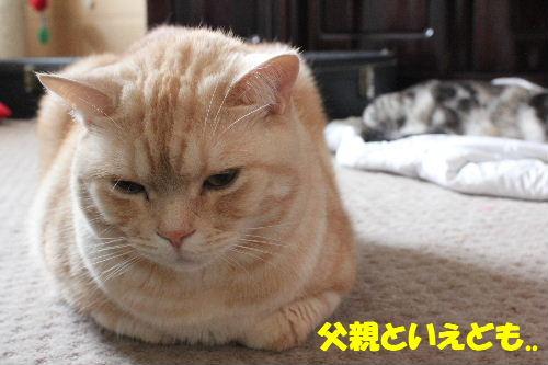 2011年5月うば3.JPG