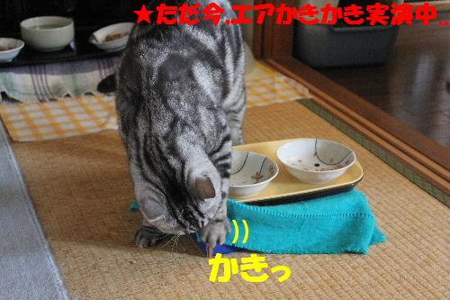 2011年5月食事4-1.JPG