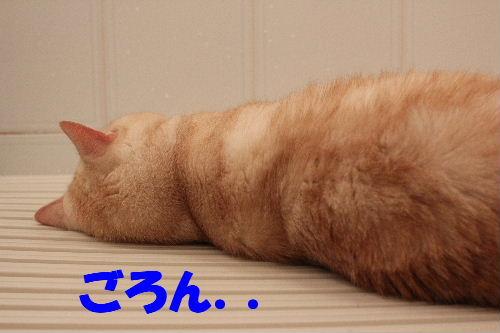 2011年7月風呂4.JPG