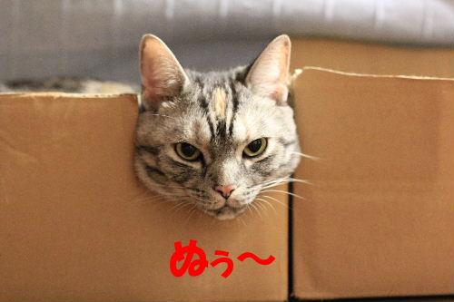 2011年9月コンビ6.JPG