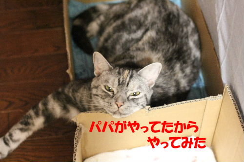 2011年9月上2-4.JPG