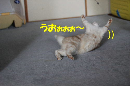 2011年9月最終5.JPG