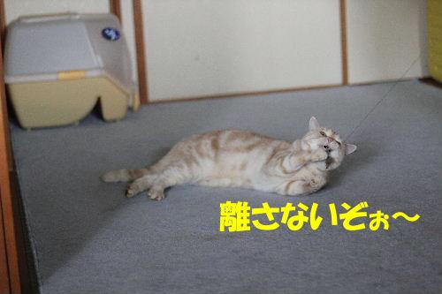2011年9月最終6-2.JPG