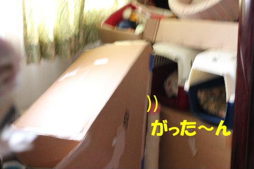 2011年9月転落1-3.JPG