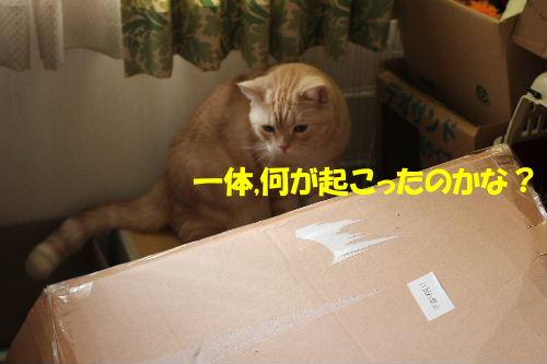 2011年9月転落3-3.JPG