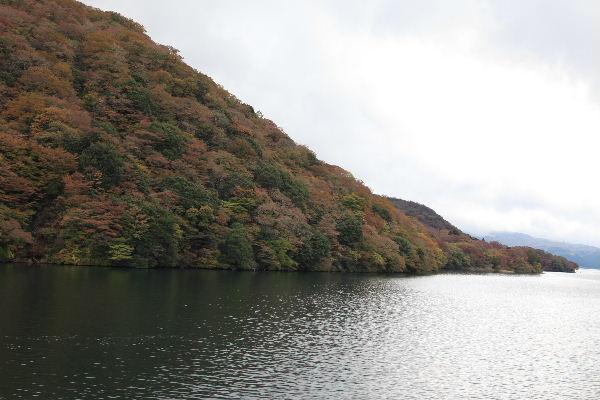 2011_11_12_6206.JPG