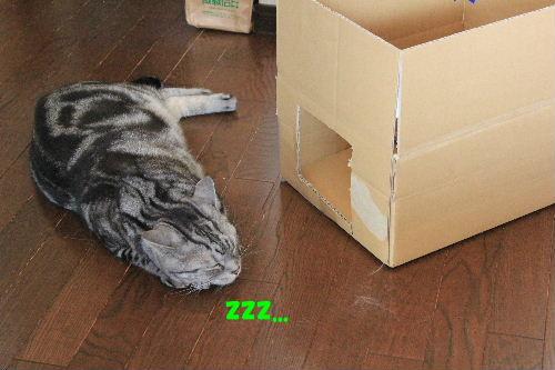 2012年2月箱箱2-5.JPG