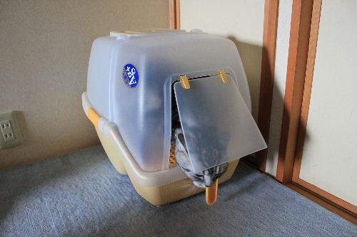 2012年4月お掃除4-4.JPG