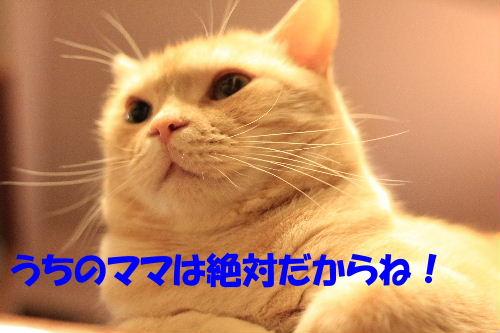 IMG_3000.JPG