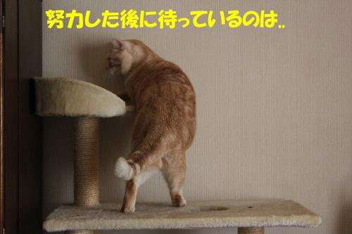 IMG_7844.JPG