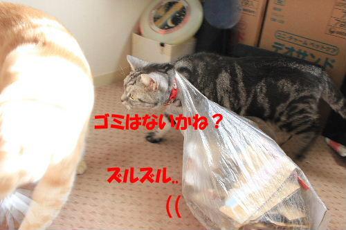 IMG_8021.JPG