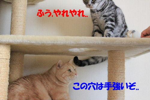 IMG_8320.JPG